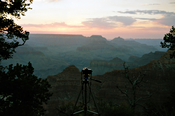 MP_Grand_Canyon_009